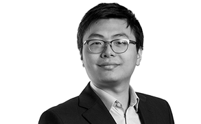 Yan Li, Healthcare Analyst